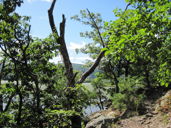 The trail's terrain is what you would expect one to be in the Hudson Highlands area, with some rocky and steep areas along the way.
