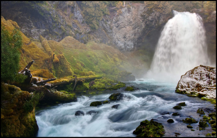 Sahalie Falls is an amazing cascade that fiercely plunges 100 feet to the rushing river below.