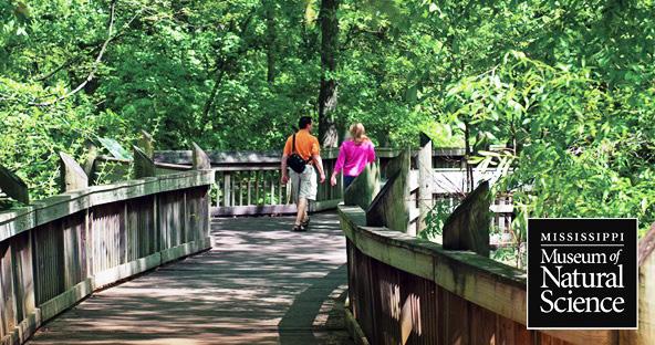 5. Lefleur's Bluff State Park Hiking Trail, Jackson