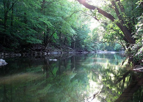 Take a moment to reflect on the beauty that surrounds you as you glance at the reflection of trees mirroring off of the creek's water. You'll find plenty of spots to sit down for a rest and access points to the creek along the trail.