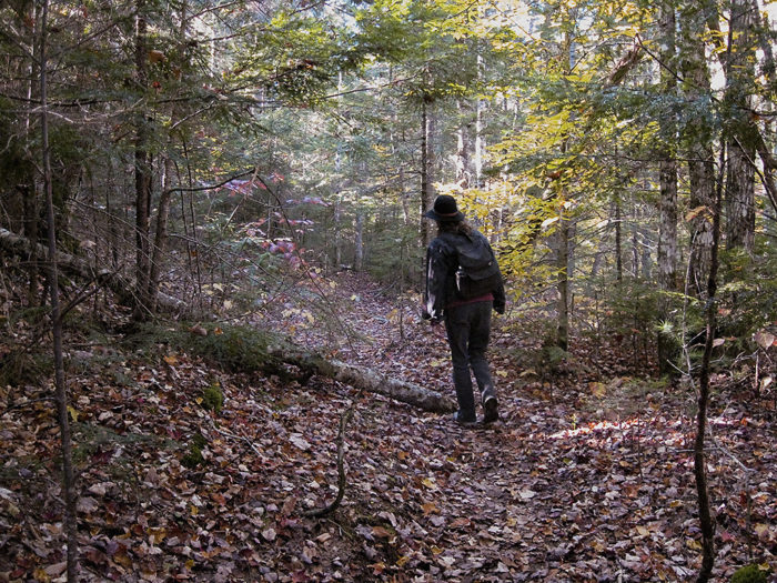 The hike towards the falls can be confusing, so stay on the path and you'll be more likely to find what many other hikers can't manage to track down.