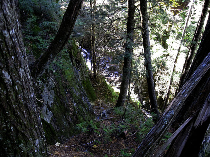While not especially hard on the legs, reaching Little Wilson Falls is no easy task.