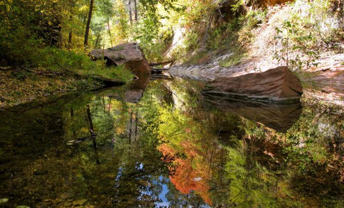 12. West Fork Trail (West Fork of Oak Creek Canyon)