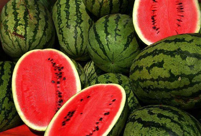 2. Green River Melon Days