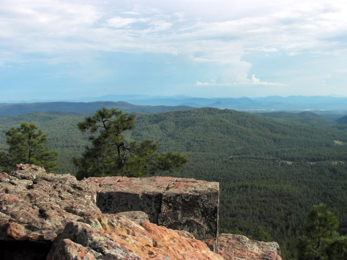 5. General Crook Trail (Mogollon Rim)