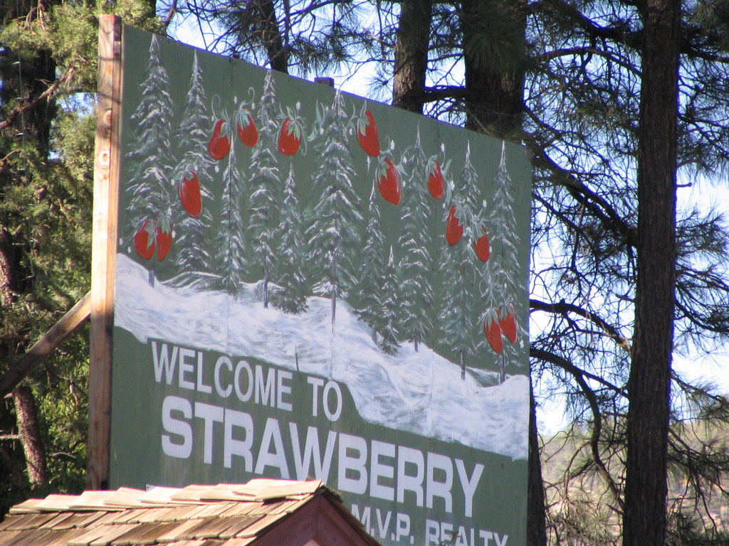 There S Plenty Of Things To Do In Strawberry Arizona