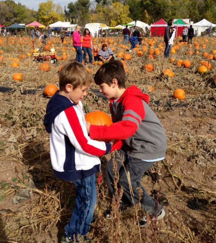6. Pumpkin Festival at Chatfield Farms, Oct. 7-9