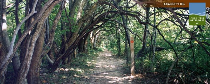 To find the tunnel, hike the 1.3-mile Orange Trail. (Click here for a map of the park's trails.)