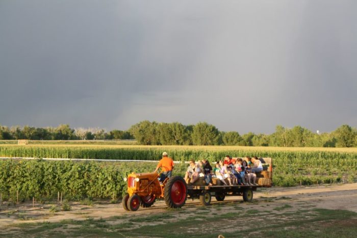 6. May Farms (Byers)