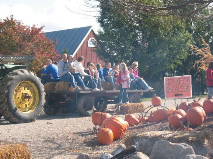 11. Lincoln Ridge Farms (Convoy)
