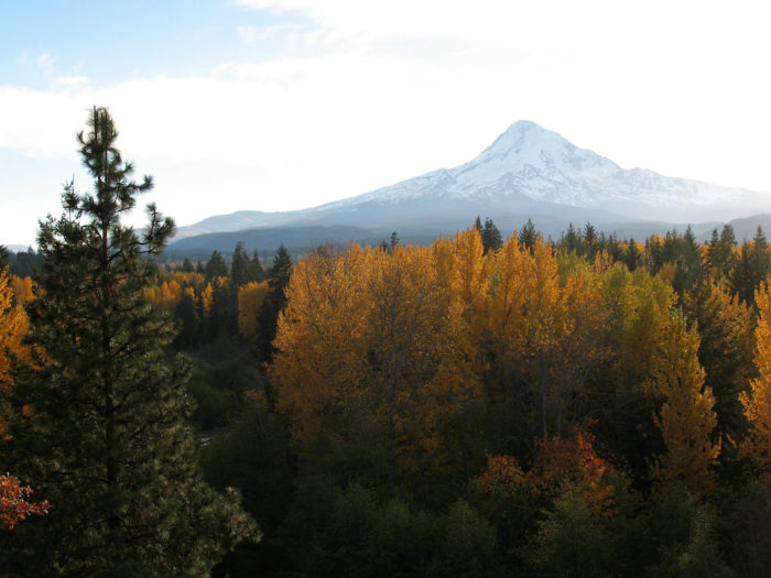 Drive along the stunning Mount Hood Scenic Byway.