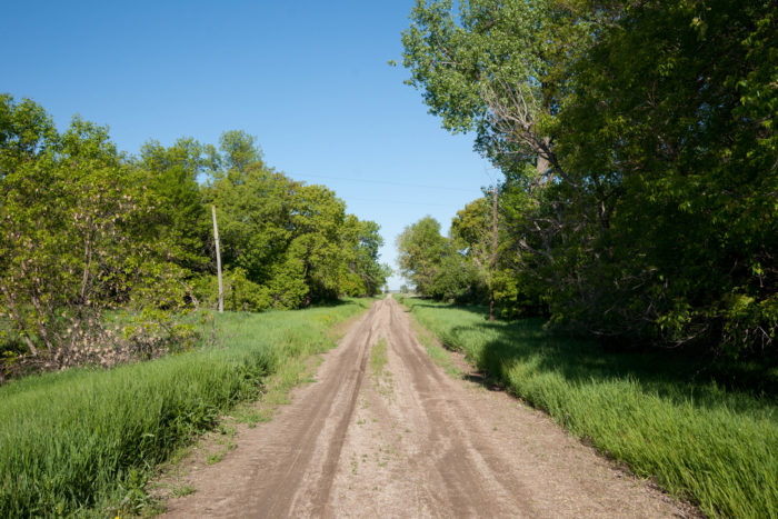 Along this dusty road and hidden among the overgrowth is the town of Sherbrooke, North Dakota.