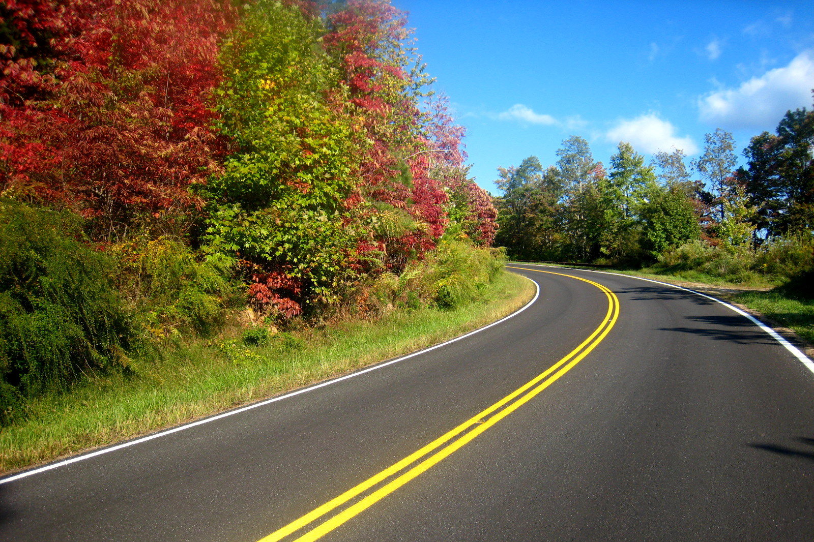 The Most Scenic Drive In Tennessee