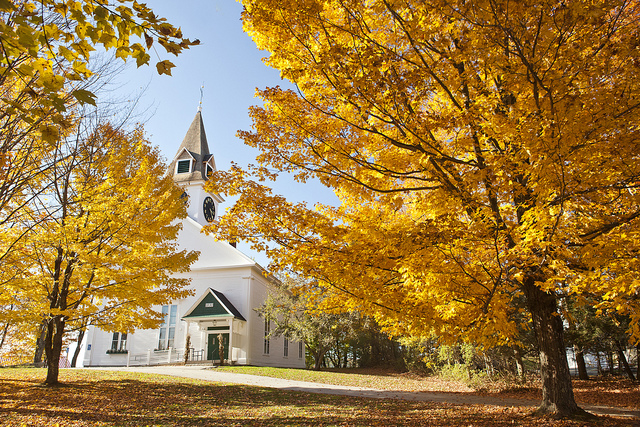 The leaves are most spectacular during the peak of the season, when entire trees blaze with red, orange and gold.