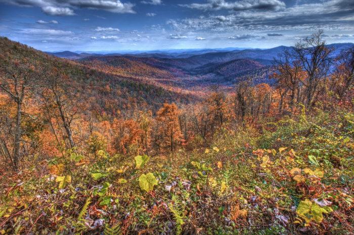 Ahhh, Blue Ridge, Georgia—you really are a true beauty, especially during the fall.