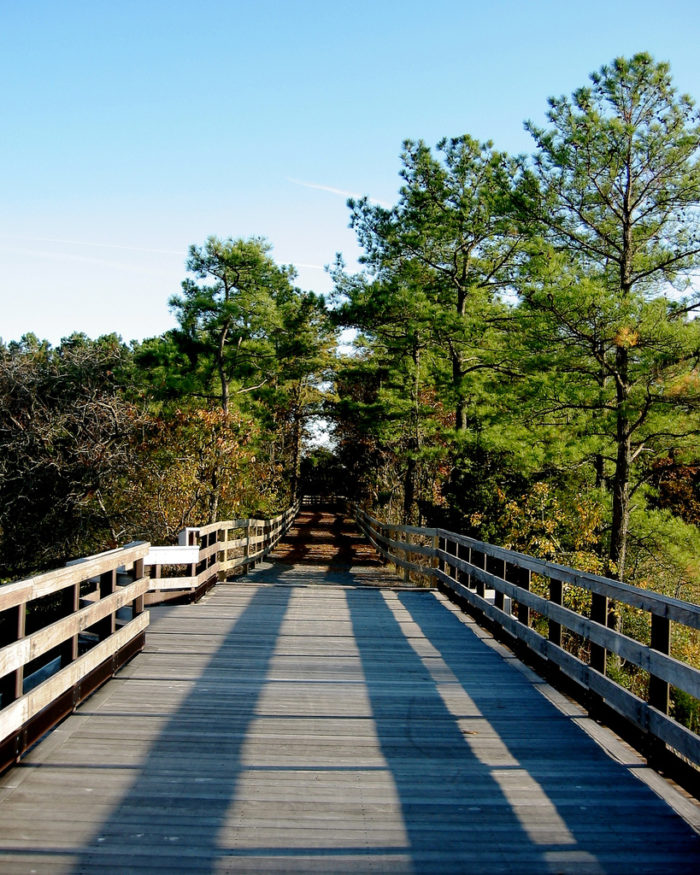 As you continue along the trail, you'll hike through multiple landscapes.