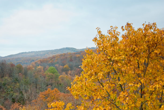 Nothing surpasses the beauty of an autumn in the Ozarks . . .