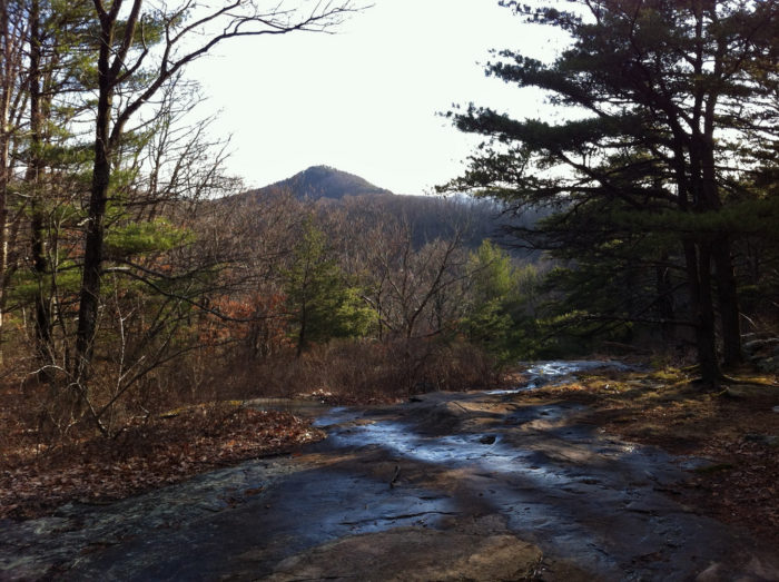 The Byron Reese Trail will take you to a four-way intersection at Flatrock Gap, where you'll meet with the Appalachian Trail and continue on.