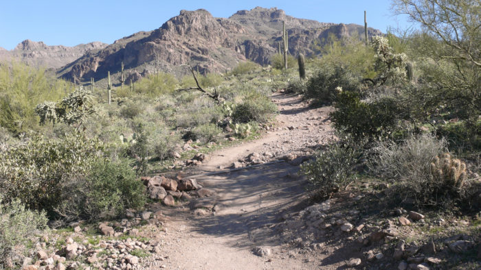 5. Hieroglyphic Trail (Superstition Mountains)