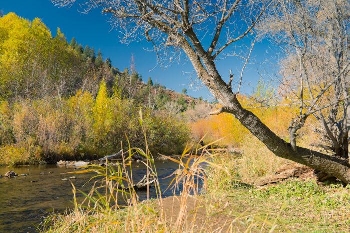 7. Bear Creek
