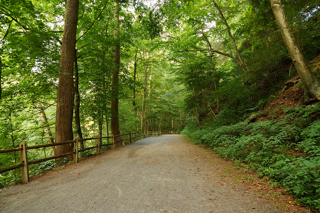 The Wissahickon Valley Park Trail in Philadelphia stretches seven miles along asphalt and gravel paths and welcomes hikers, bicyclists, and even horseback riders. In the winter, cross-country skiers ski along the snow-covered trail.