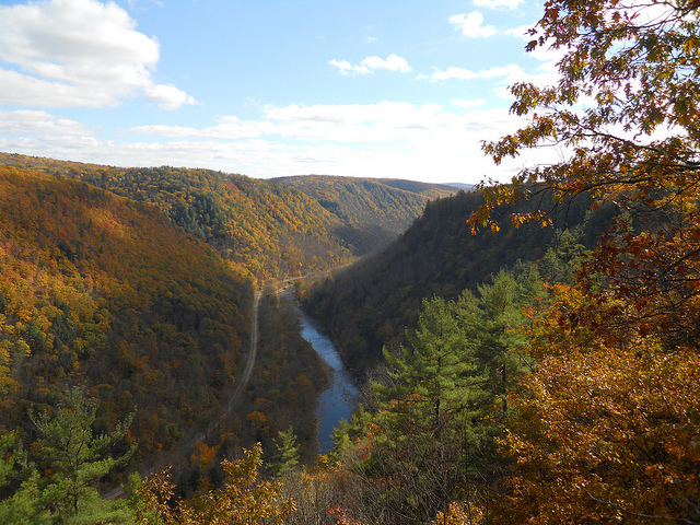 Hike to the scenic vistas at nearby Leonard Harrison State Park or Colton Point State Park for unspoiled views of the Grand Canyon of Pennsylvania.