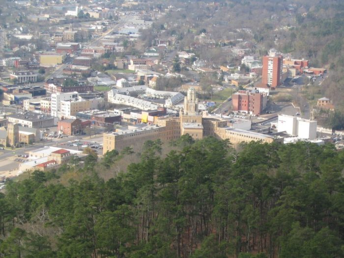 . . . to catch panoramic views of the city and the forest that surrounds it.