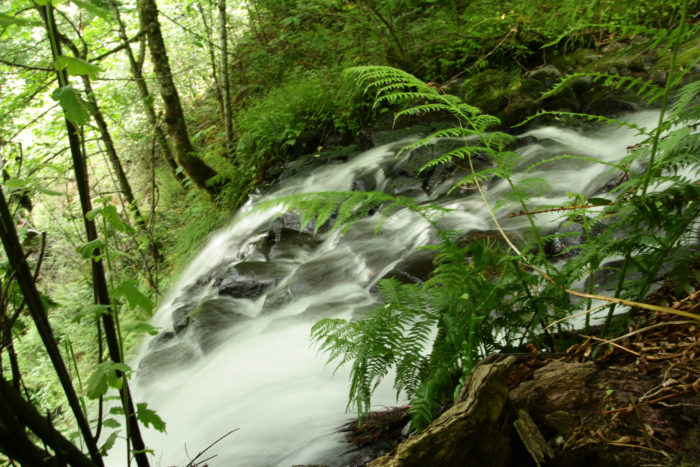 Along the way, you'll pass a couple lovely waterfalls, including the top of Coopey Falls (pictured below).