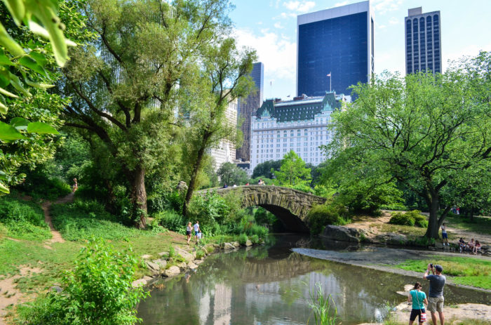 10. Enjoy one of the few areas of New York City where you can find wide open spaces at Central Park!