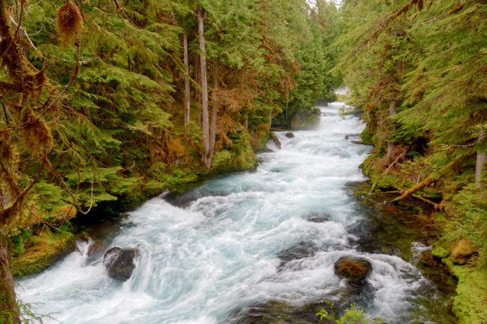 Framed in emerald green foliage, the rushing river is absolutely enchanting.