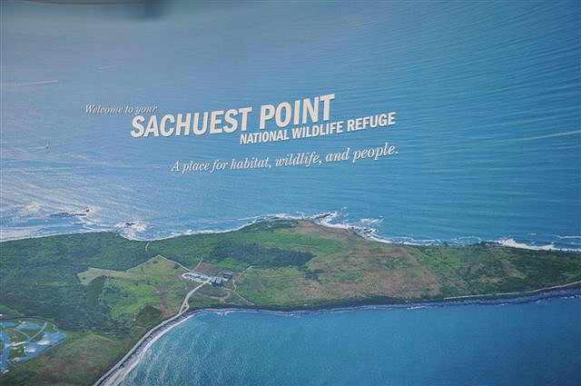 Sachuest Point National Wildlife Refuge is a stunning refuge found in Middletown on Aquidneck Island.