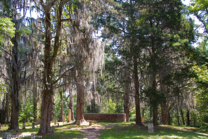 8. Rocky Springs Hiking Trail, Port Gibson