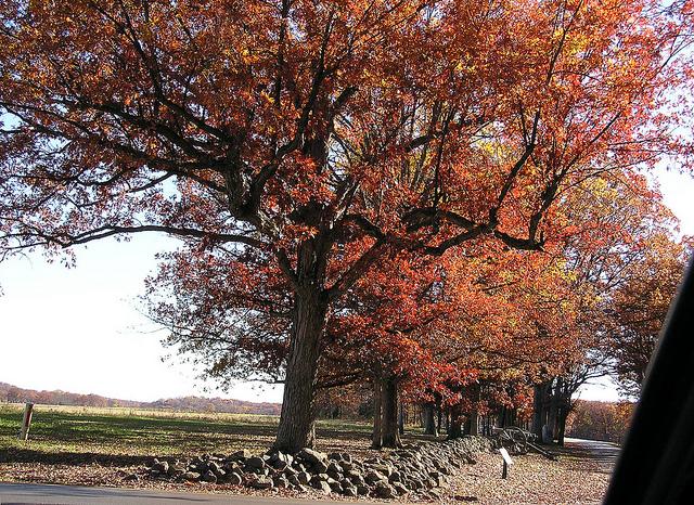 8. Gettysburg National Military Park