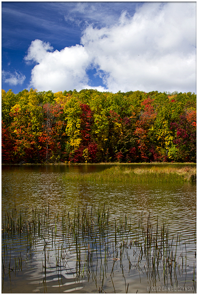 4. Cooper Lake State Park (Cooper)