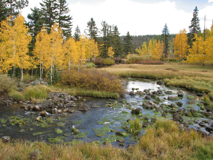 Duck Creek is a popular spot for camping and fishing.