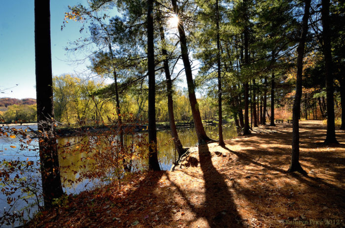 The Best Campground in Minnesota's William O'Brien State Park