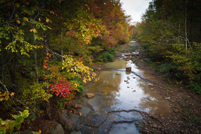 12. Hurricane Creek Wilderness
