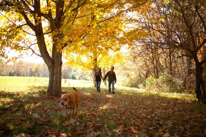 Great Brook Farm State Park, Carlisle
