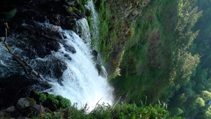 Circling back to the trailhead, you'll find yourself at the top of the incredible Multnomah Falls.
