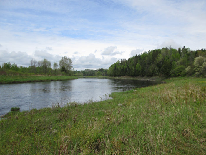 10. The Southern Bangor and Aroostook Trail