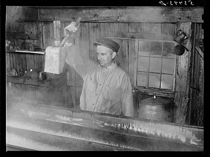 16.  Walter N. Gaylord dripping the boiled-down maple syrup sap to see if it has reached correct consistency for syrup.