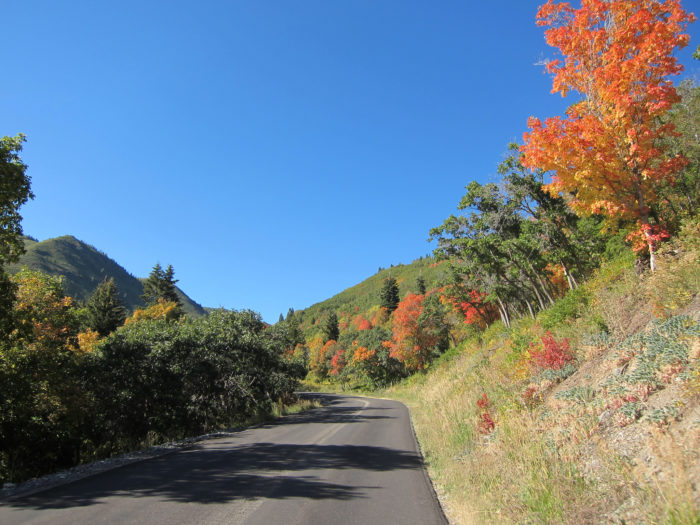 The winding, paved road is open from May through October.