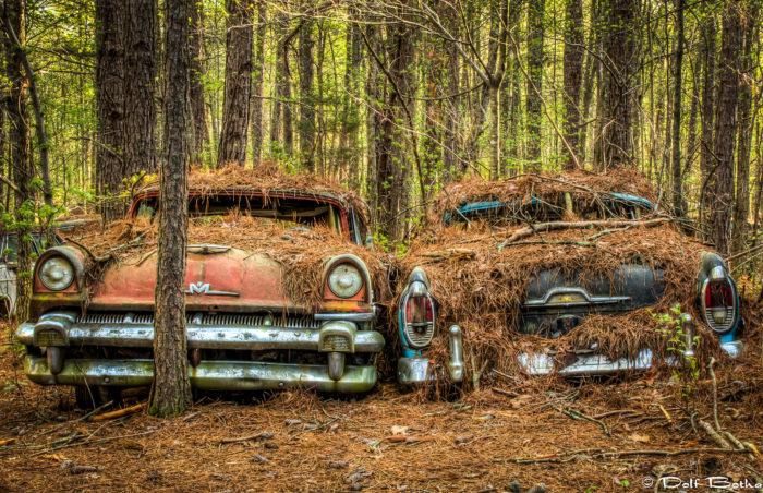 This Eeriest Automobile Graveyard In Georgia Is Beautiful