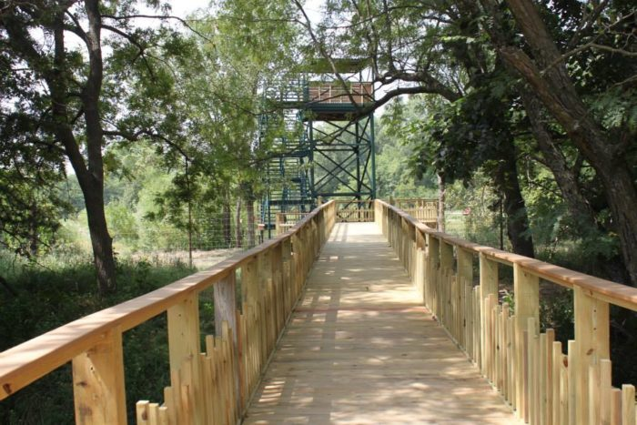 If you're up for a bit of a climb, the park features one of the media boxes from the late Rosenblatt Stadium. At 28 feet tall, it offers a wonderful vantage point to view sandhill cranes, pelicans, free-roaming waterfowl, trumpeter swans, and the various turtles and frogs in the wetland area.
