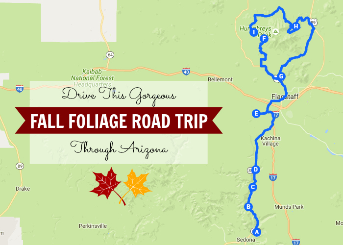 Take This Gorgeous Fall Foliage Road Trip Through Arizona