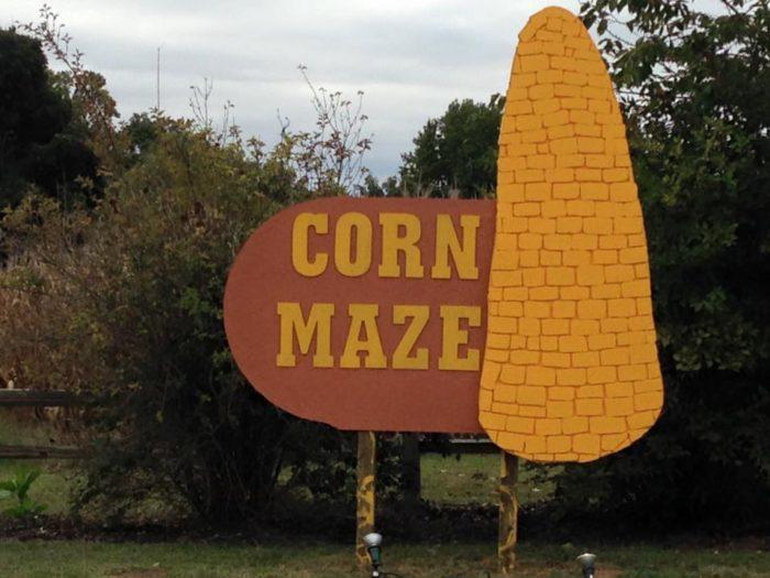 3. Angel Mounds Corn Maze - Evansville
