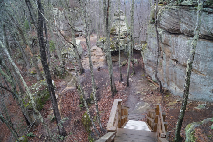 At about two miles into the hike, you will reach stairs that take you down about 80 feet to Courthouse Rock, where the Auxier Ridge Trail ends.