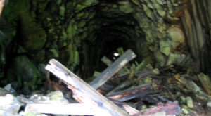 This Haunted Tunnel In Washington Is Not For The Faint Of Heart