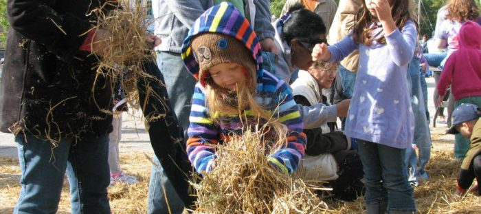 8. Shawnee Scarecrow Festival (Shawnee)