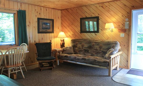 Cabin2_living